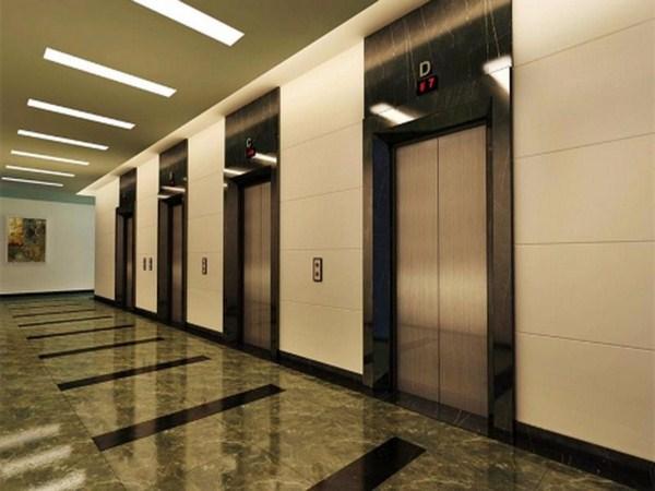 Lắp đặt theo hàng thang máy tải khách